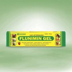 FLUNIMIN GEL