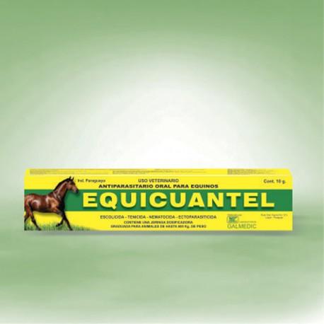 EQUICUANTEL