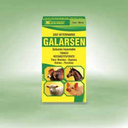 GALARSEN
