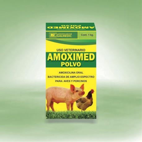 AMOXIMED POWDER - Galmedic
