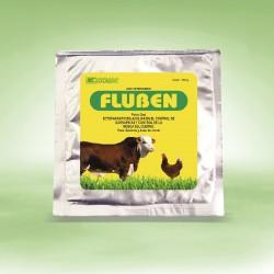 FLUBEN