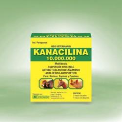 KANACILINA 10.000.000
